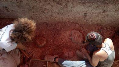 Photo of Realizan hallazgos arqueológicos indígenas en el estado Lara