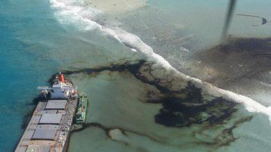 La isla Mauricio al borde de una gran desastre ecológico