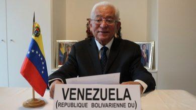 Photo of Venezuela reitera plena voluntad de estrechar lazos de cooperación con ACNUDH