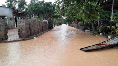 Photo of Vietnam reporta 31 muertes tras el paso del tifón Molave